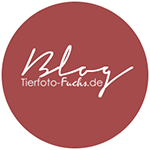 Blog |Tierfoto-Fuchs